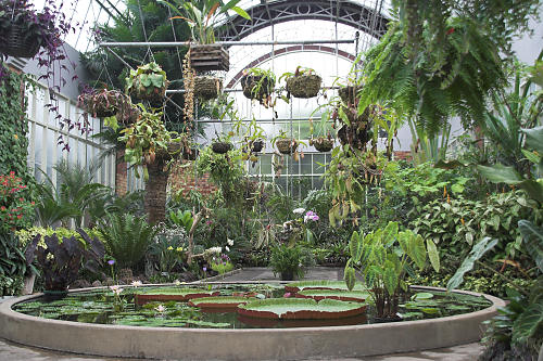 Image result for steampunk greenhouse